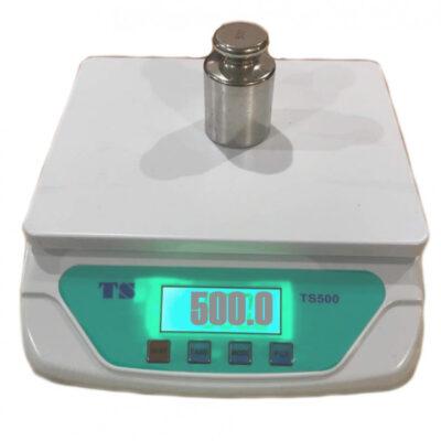 TS-500